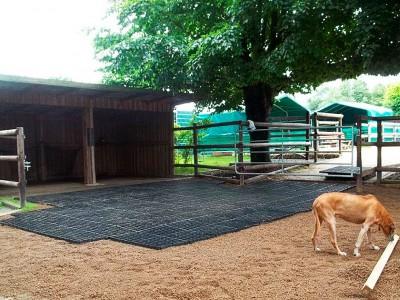 Bodenbefestigung mit Paddockplatten für eine Weidehütte