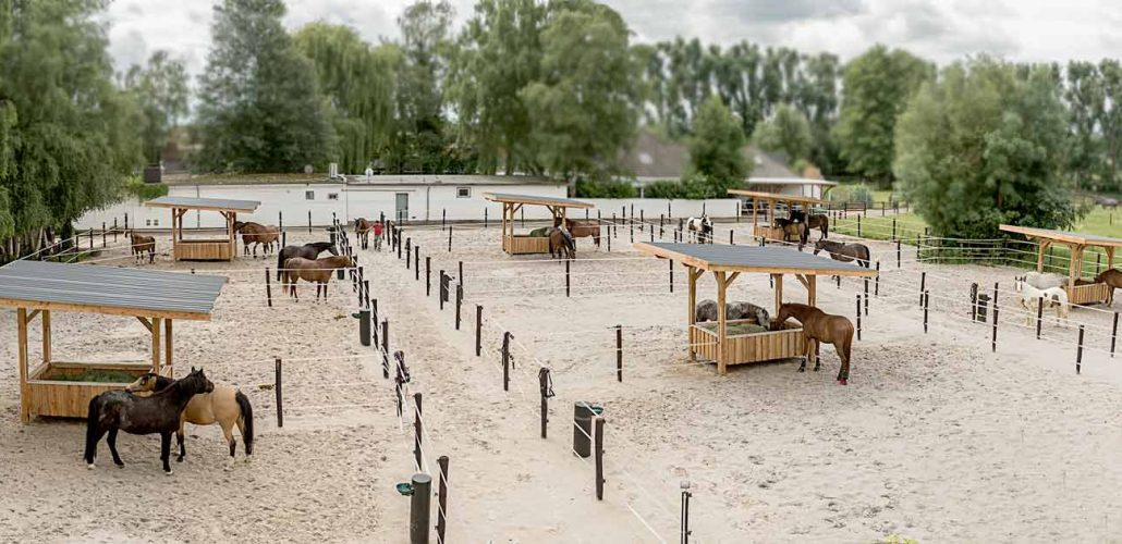 Paddock für pferde mit Unterteilung für Gruppenhaltung.